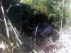 Caminhoneiro morre em acidente na MG-108; vítima teria cochilado ao volante